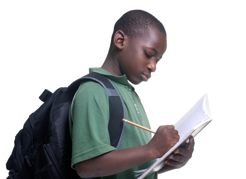 journal entry african american essay Journal entry 7 on studybaycom - english language, essay - reubenkevin r$ journal entry 7 , essay write from the viewpoint of an african american male that is 20 years old how does your ethnicity rate with cardiovascular risks.